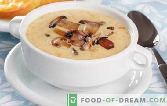 Крем от гъбена супа - лудостта на вкусове и аромати! Селекция от рецепти за разнообразни гъбени супи за всеки ден