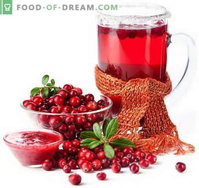 Сок от червена боровинка - най-добрите рецепти. Как правилно и вкусно да се готви сокът от боровинки.